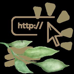 Website & Design